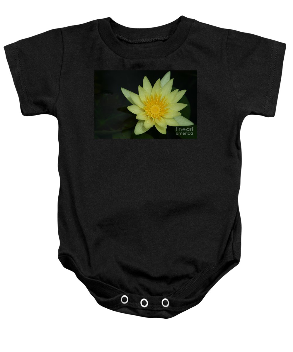 Aloha Baby Onesie featuring the photograph Yellow Waterlily - Nymphaea Mexicana - Hawaii by Sharon Mau