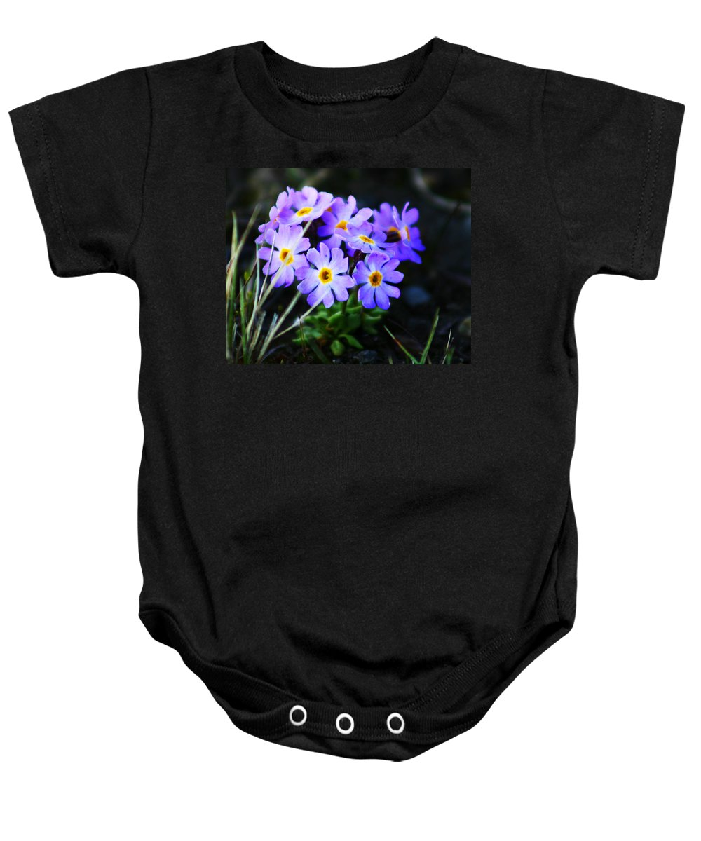Flowers Baby Onesie featuring the photograph Alaskan Wild Flowers by Anthony Jones