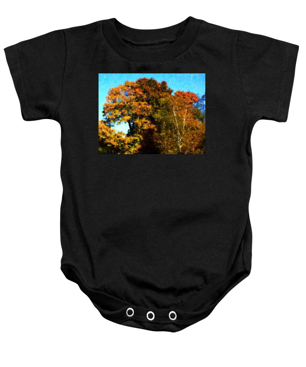 Digital Photography Baby Onesie featuring the photograph Autumn Leaves by David Lane