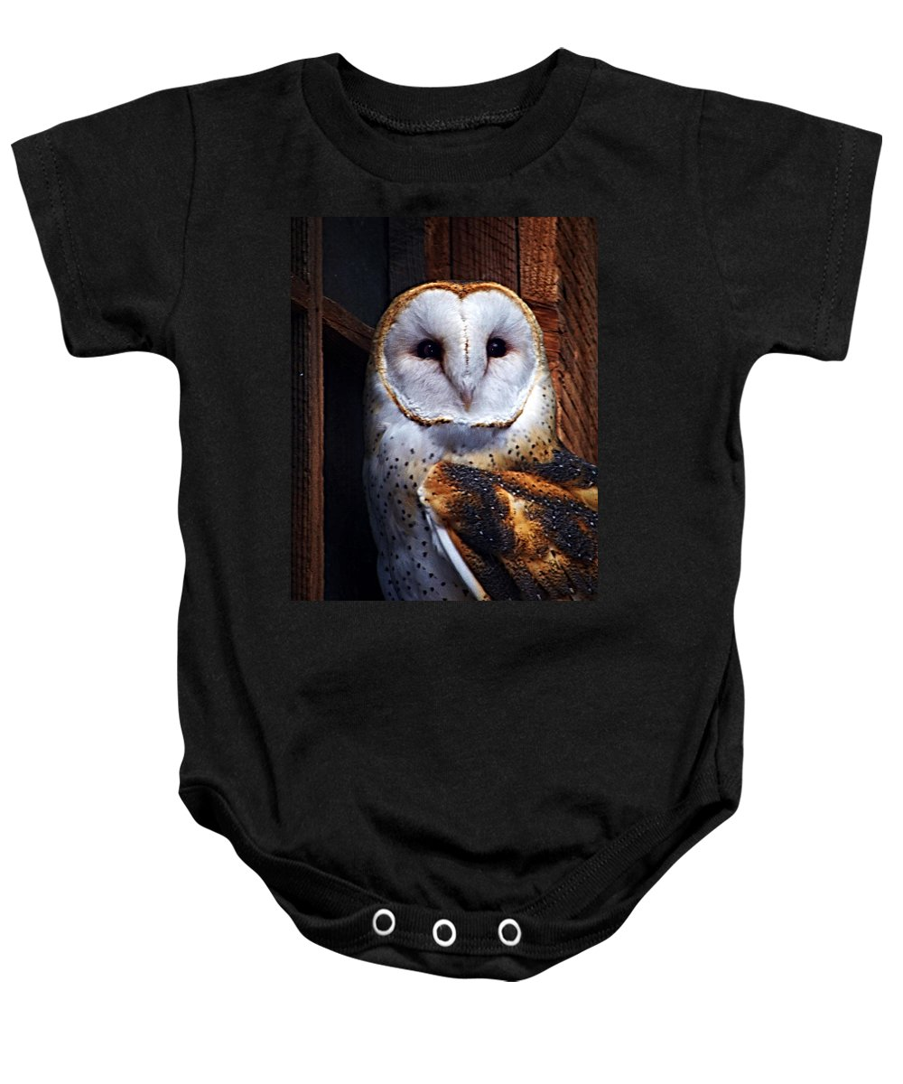 Digital Painting Baby Onesie featuring the photograph Barn Owl by Anthony Jones
