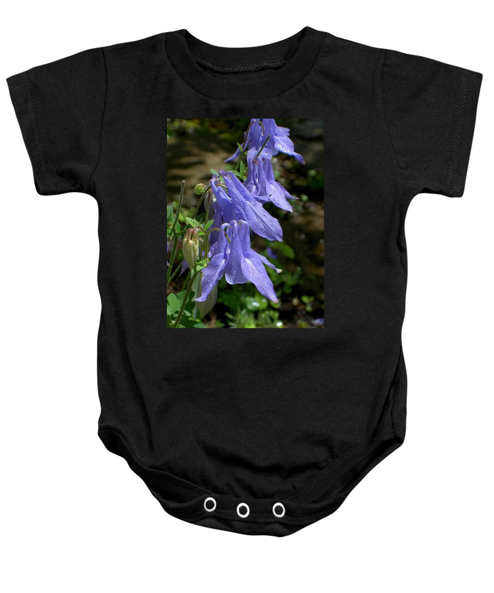 Columbine Baby Onesie featuring the photograph Columbine Surprise by Carolyn Jacob