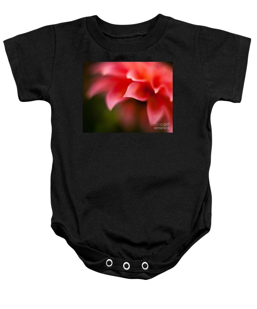 Dahlia Baby Onesie featuring the photograph Dahlia Edges by Mike Reid