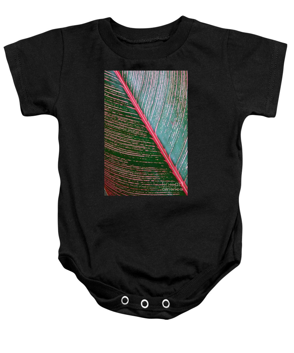 Colorful Baby Onesie featuring the photograph Heliconia Leaf by Peter French - Printscapes