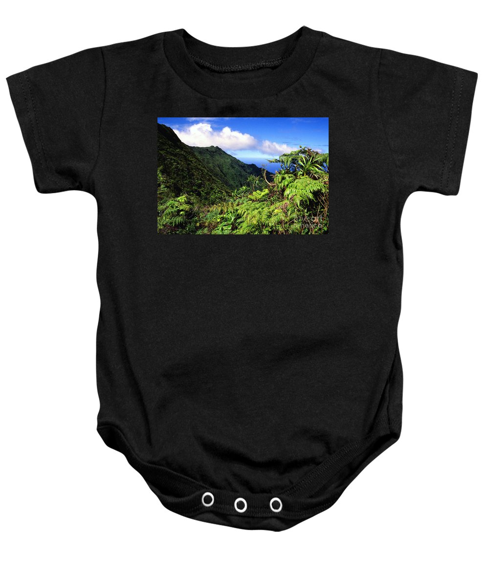 Hapu Tree Ferns Baby Onesie featuring the photograph Koolau Summit Trail by Thomas R Fletcher