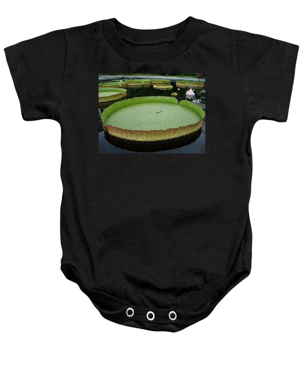 Lily Baby Onesie featuring the painting Lily Pads by Eric Schiabor