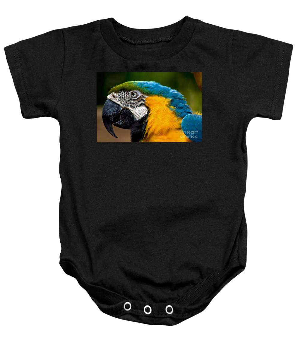 Macaw Baby Onesie featuring the photograph Macaw by Thomas Marchessault
