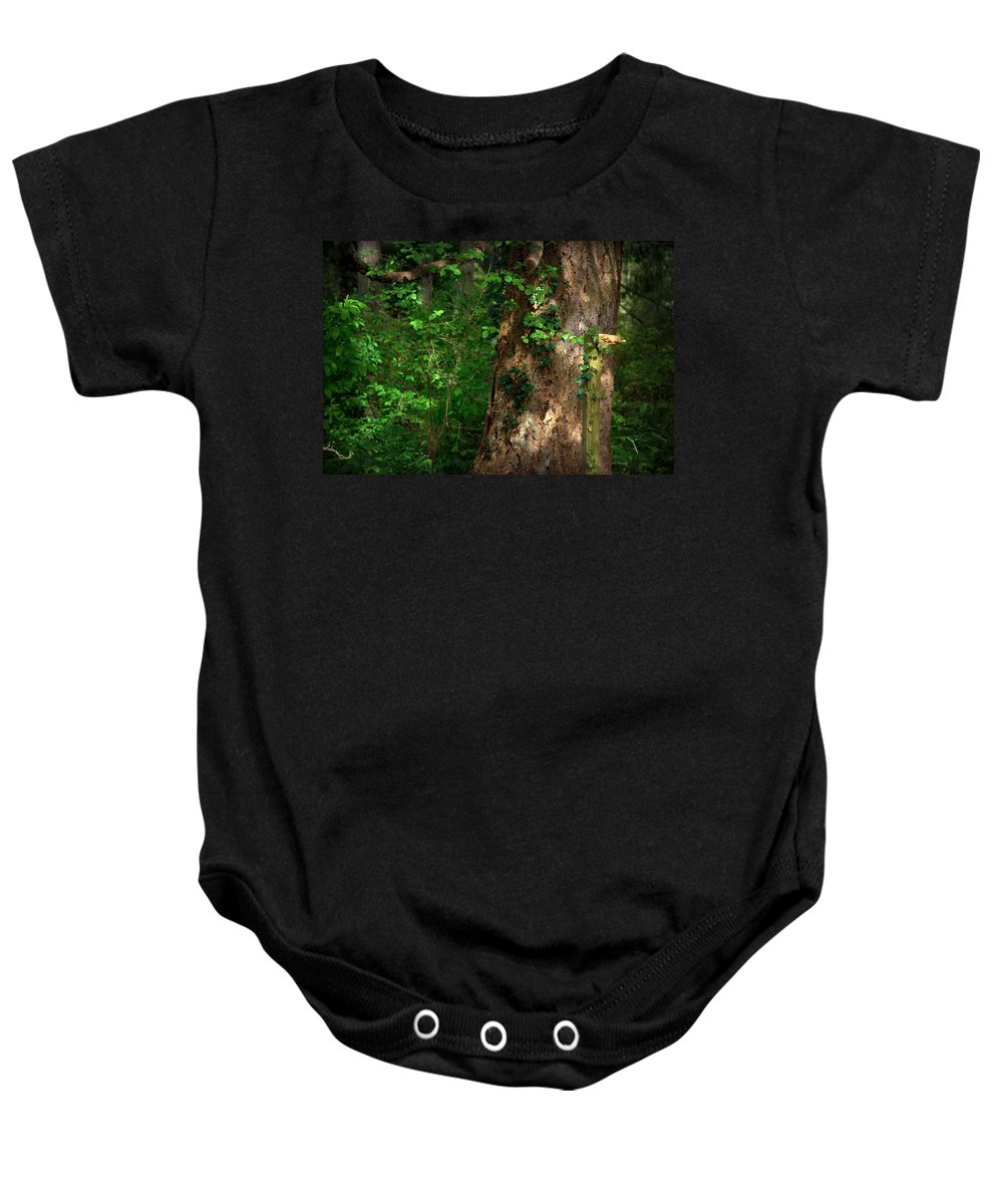 Morning Baby Onesie featuring the photograph Morning Light by Jeanette C Landstrom