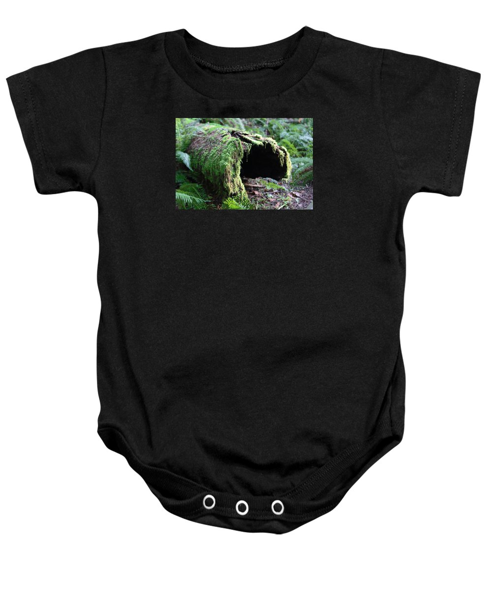 Tree Baby Onesie featuring the photograph Moss by Naman Imagery