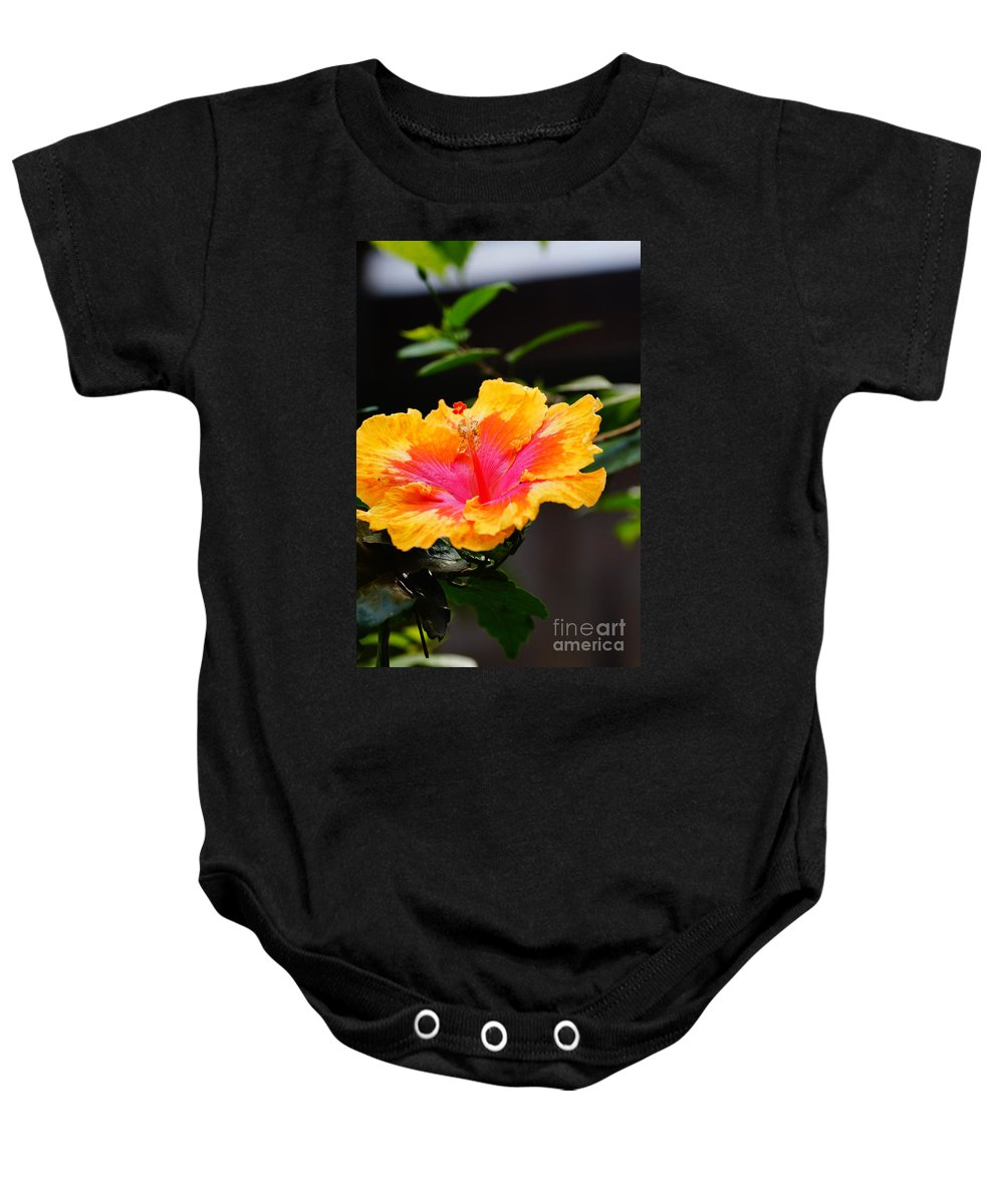 Flowers Baby Onesie featuring the photograph Open For Business by Jeffery L Bowers