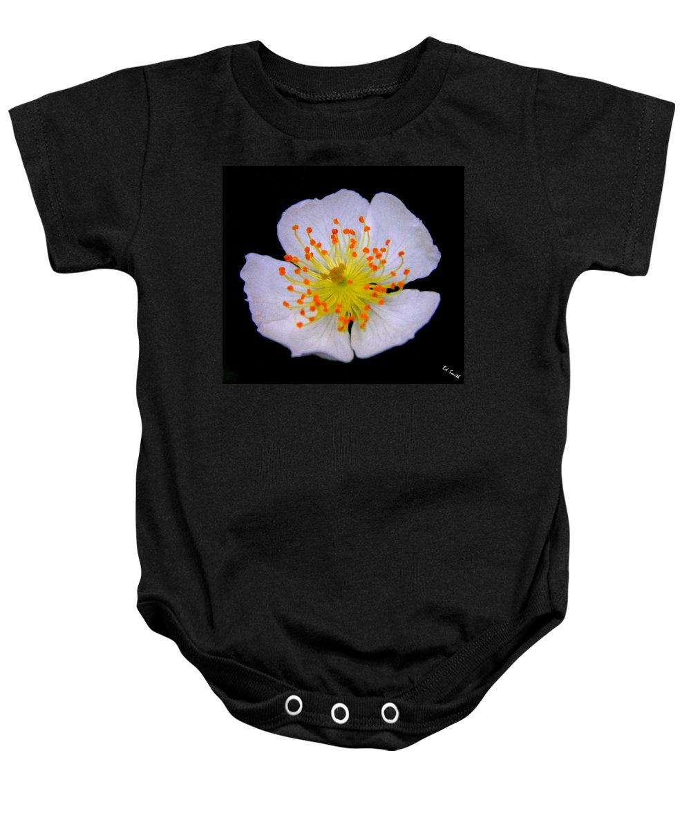 Orange Tips Baby Onesie featuring the photograph Orange Tips by Ed Smith