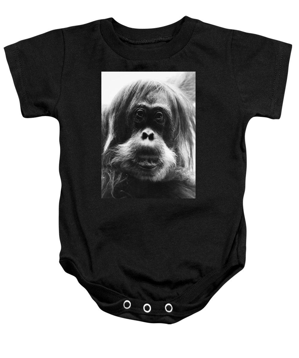 20th Century Baby Onesie featuring the photograph Orangutan by Granger