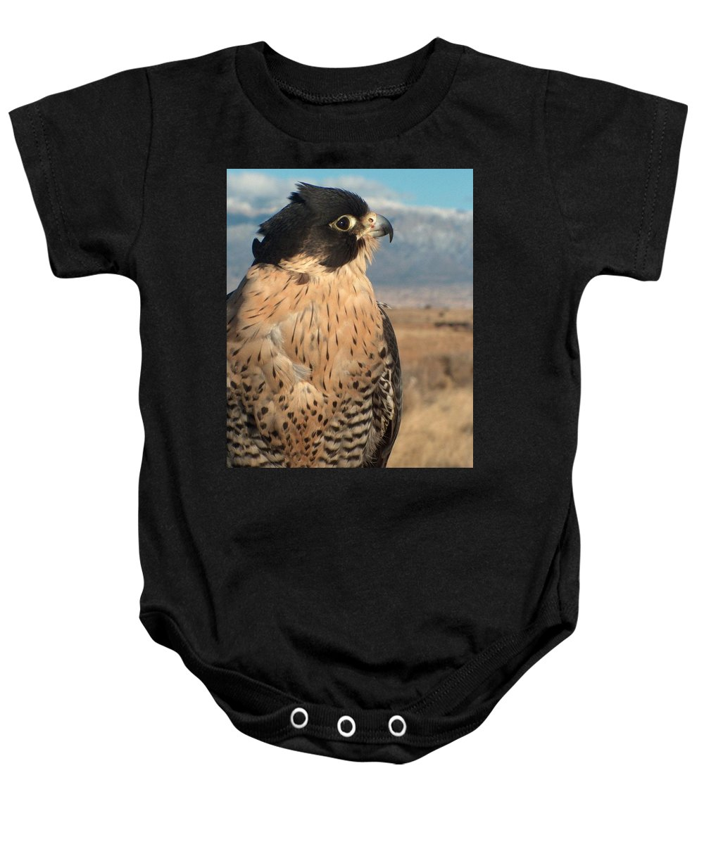 Peregrine Falcon Baby Onesie featuring the photograph Peregrine Falcon by Tim McCarthy
