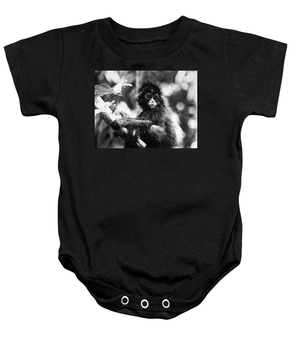 20th Century Baby Onesie featuring the photograph Spider Monkey by Granger
