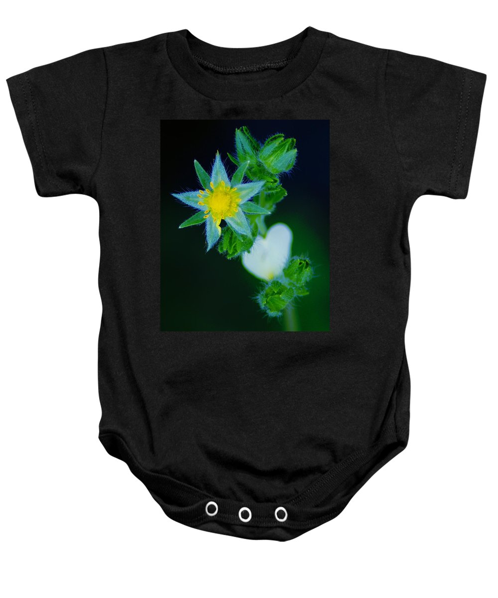 Flowers Baby Onesie featuring the photograph Starflower by Ben Upham III