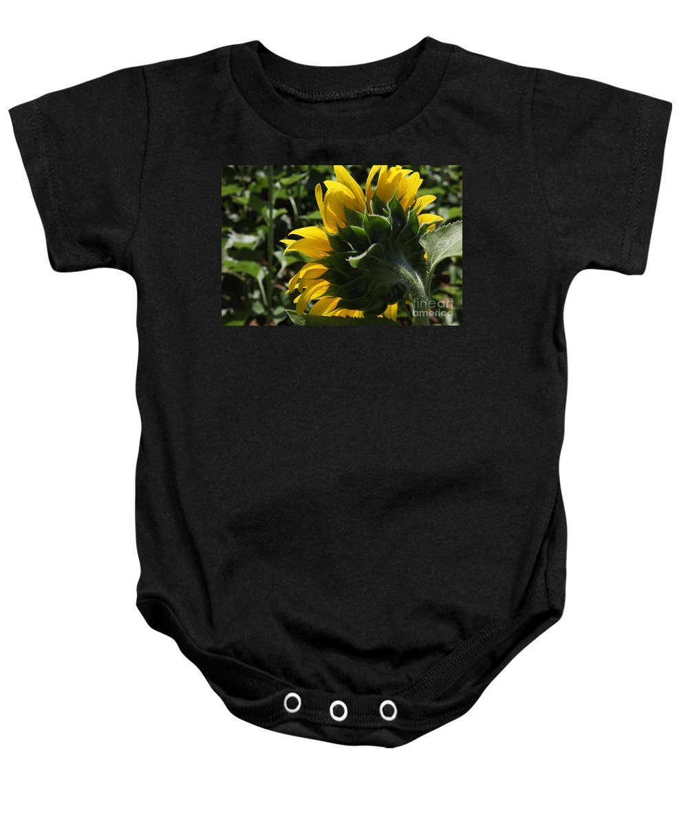 Sunflower Baby Onesie featuring the photograph Sunflower Series 09 by Amanda Barcon