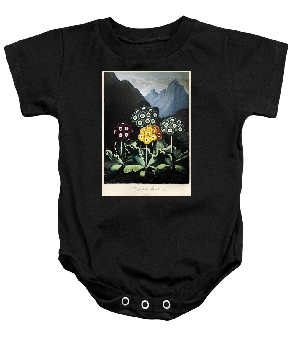 1807 Baby Onesie featuring the photograph Thornton: Auriculas by Granger