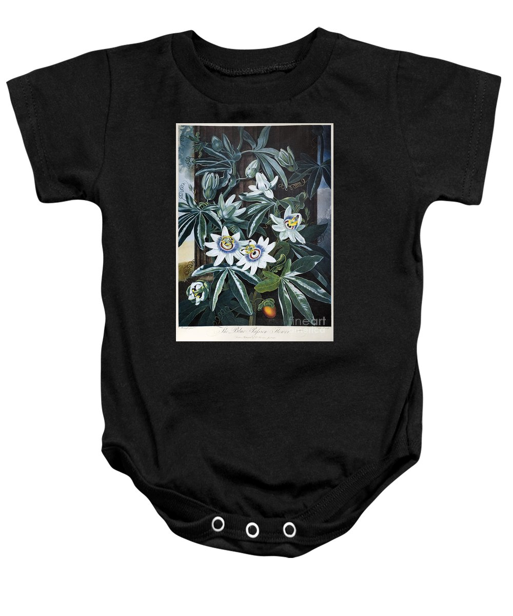 1800 Baby Onesie featuring the photograph Thornton: Passion-flower by Granger