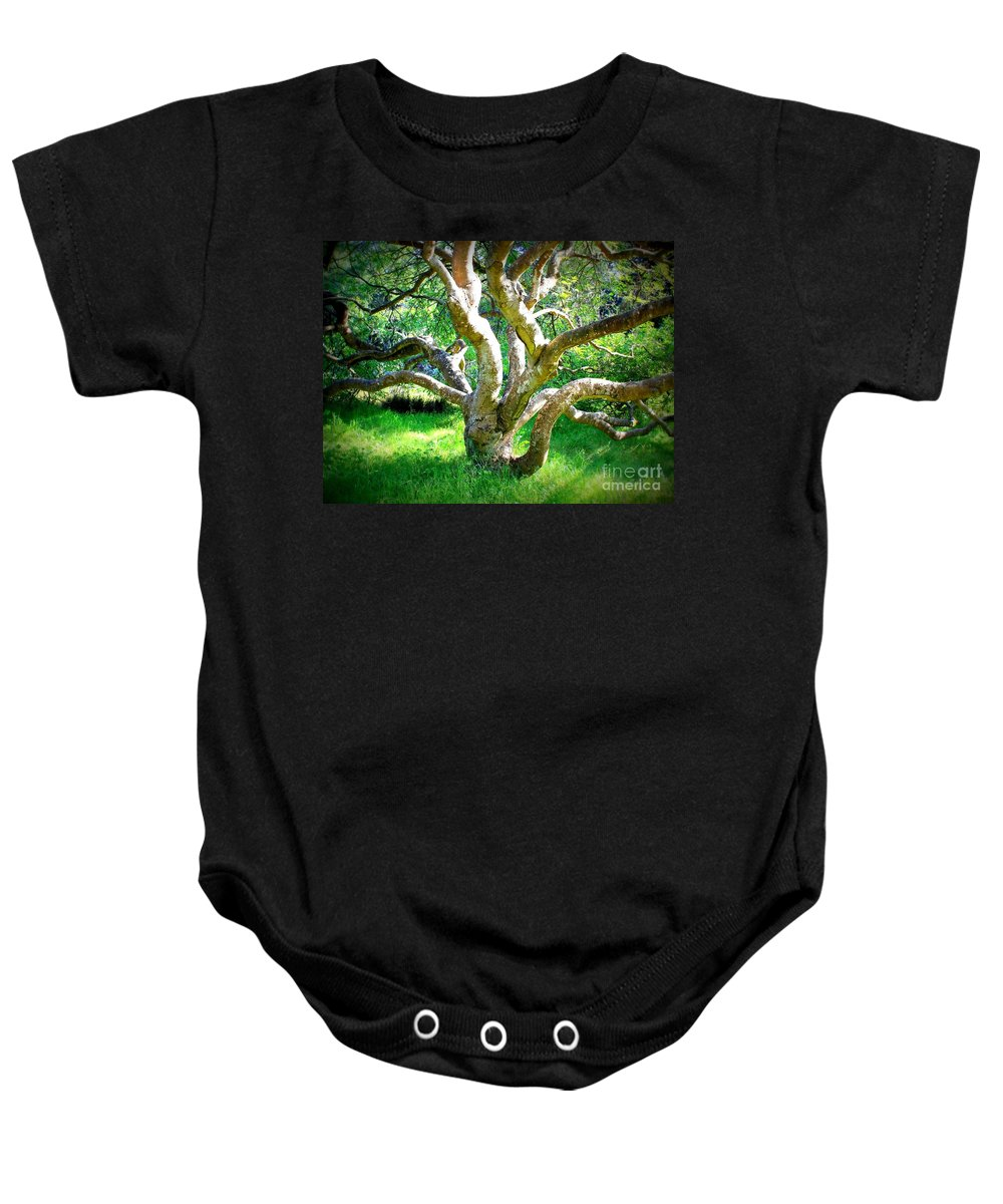 Photography Baby Onesie featuring the photograph Tree In Golden Gate Park by Carol Groenen