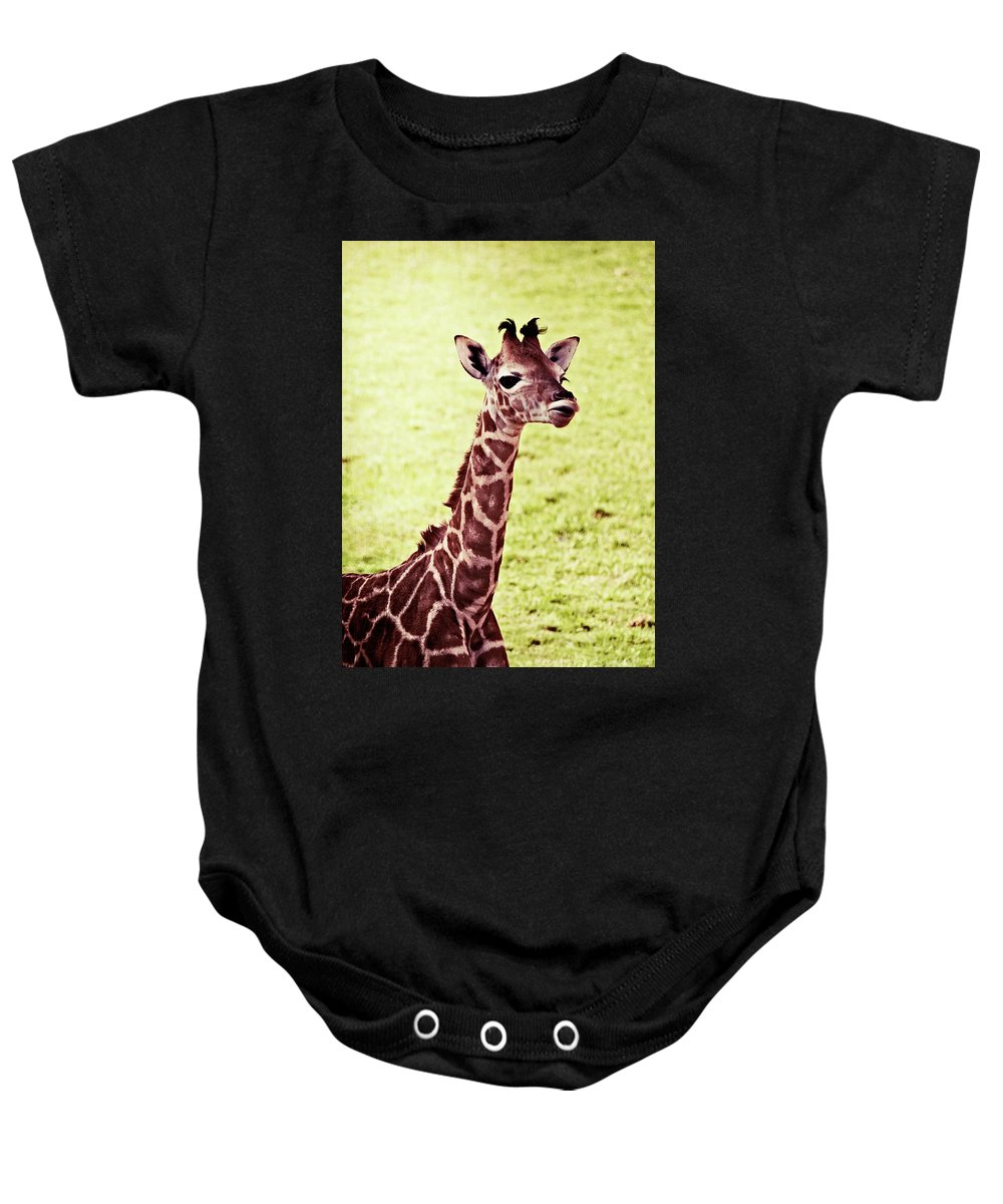 Baby Baby Onesie featuring the photograph Baby Giraffe by Jim And Emily Bush