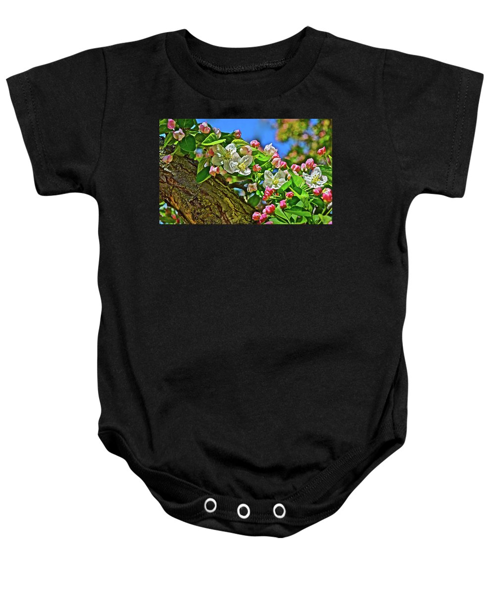 Crabapple Tree Baby Onesie featuring the photograph 2016 Early May King Arthur Crabapple by Janis Nussbaum Senungetuk