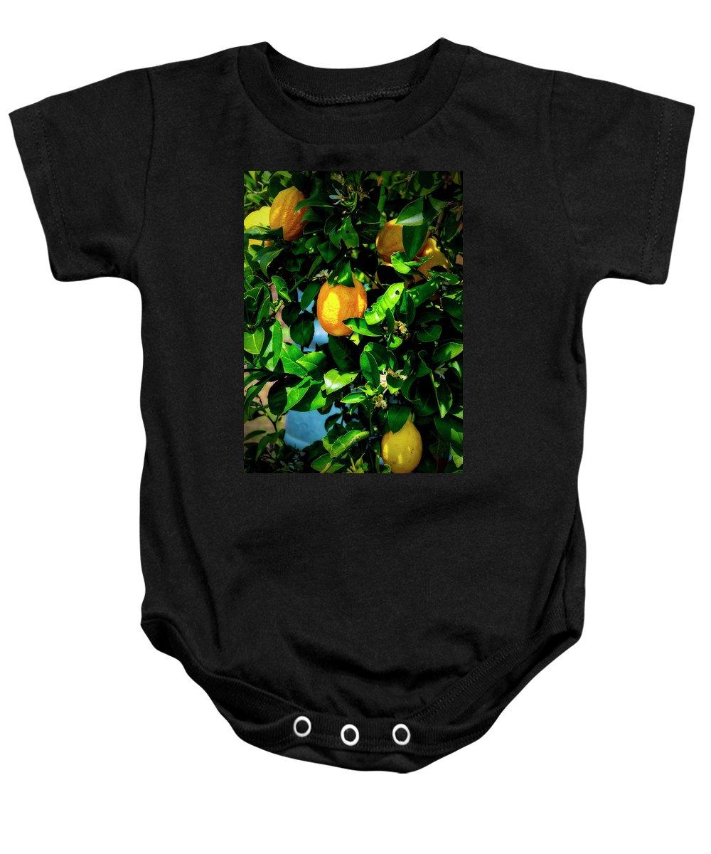 David Coffaro Vineyard & Winery Baby Onesie featuring the photograph 2644- Lemon Tree by David Lange
