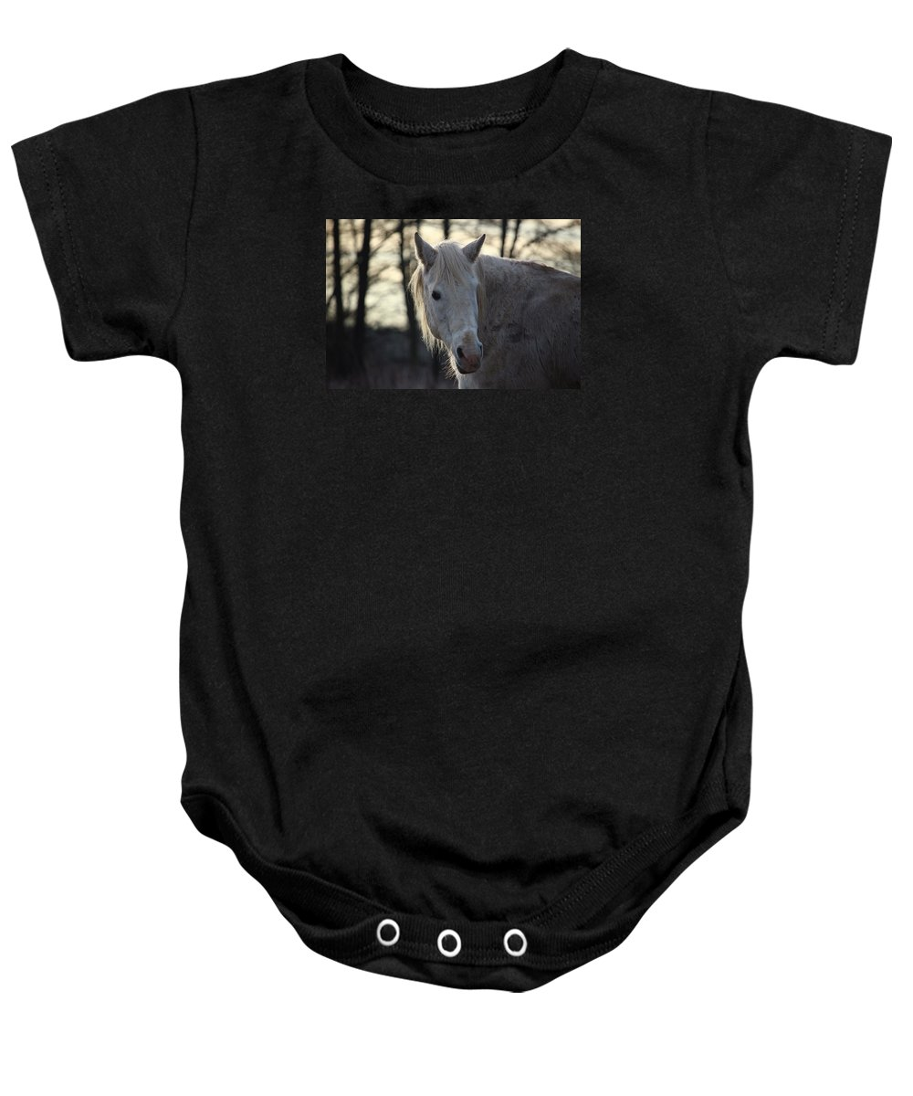Horse Horses Baby Onesie featuring the photograph Horse by FL Collection