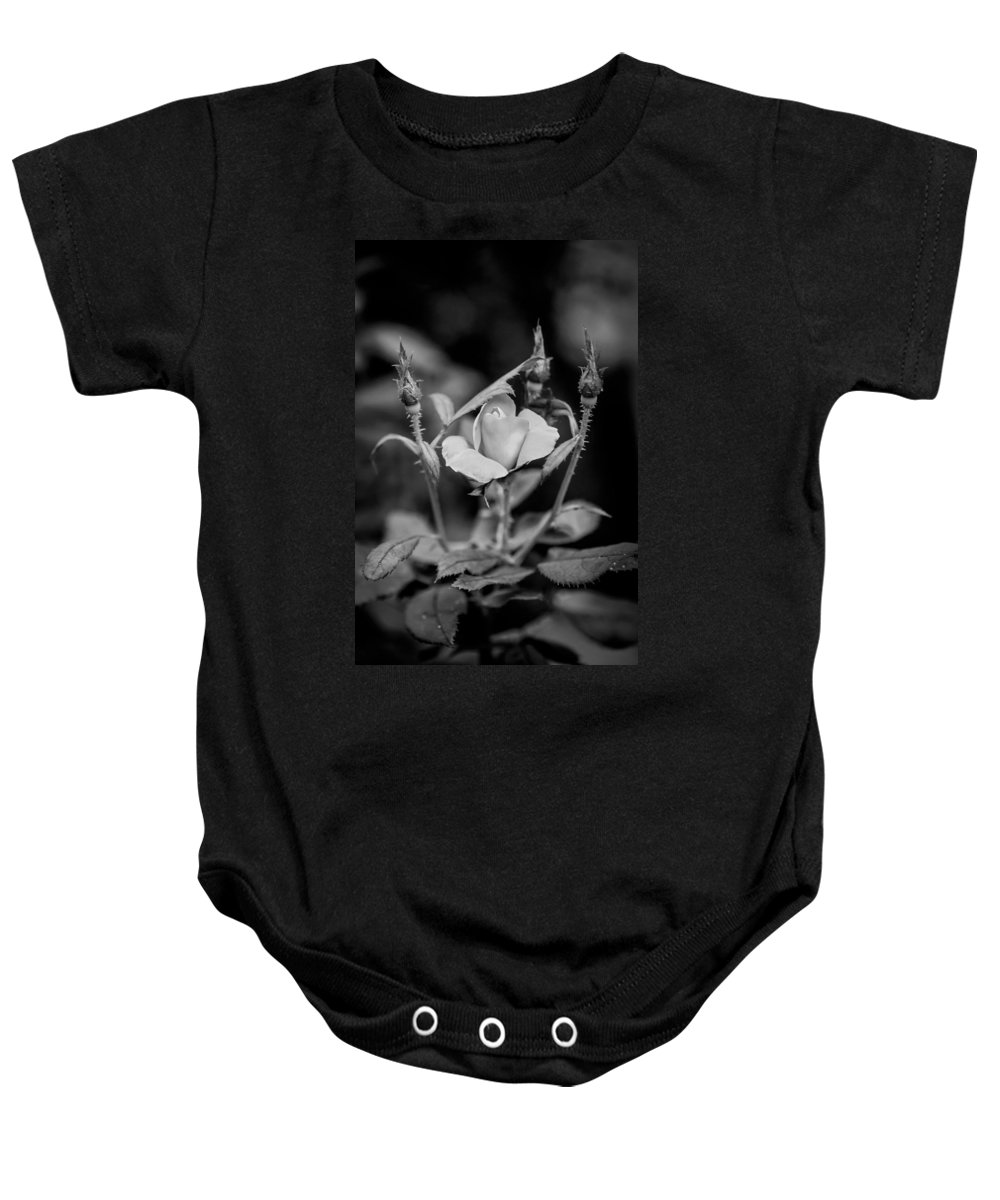 Roses Baby Onesie featuring the photograph Knockout Roses Painted Bw by Rich Franco