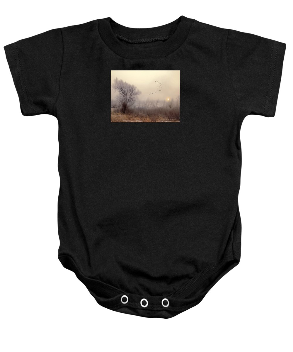 Landscape Baby Onesie featuring the photograph 4191 by Peter Holme III