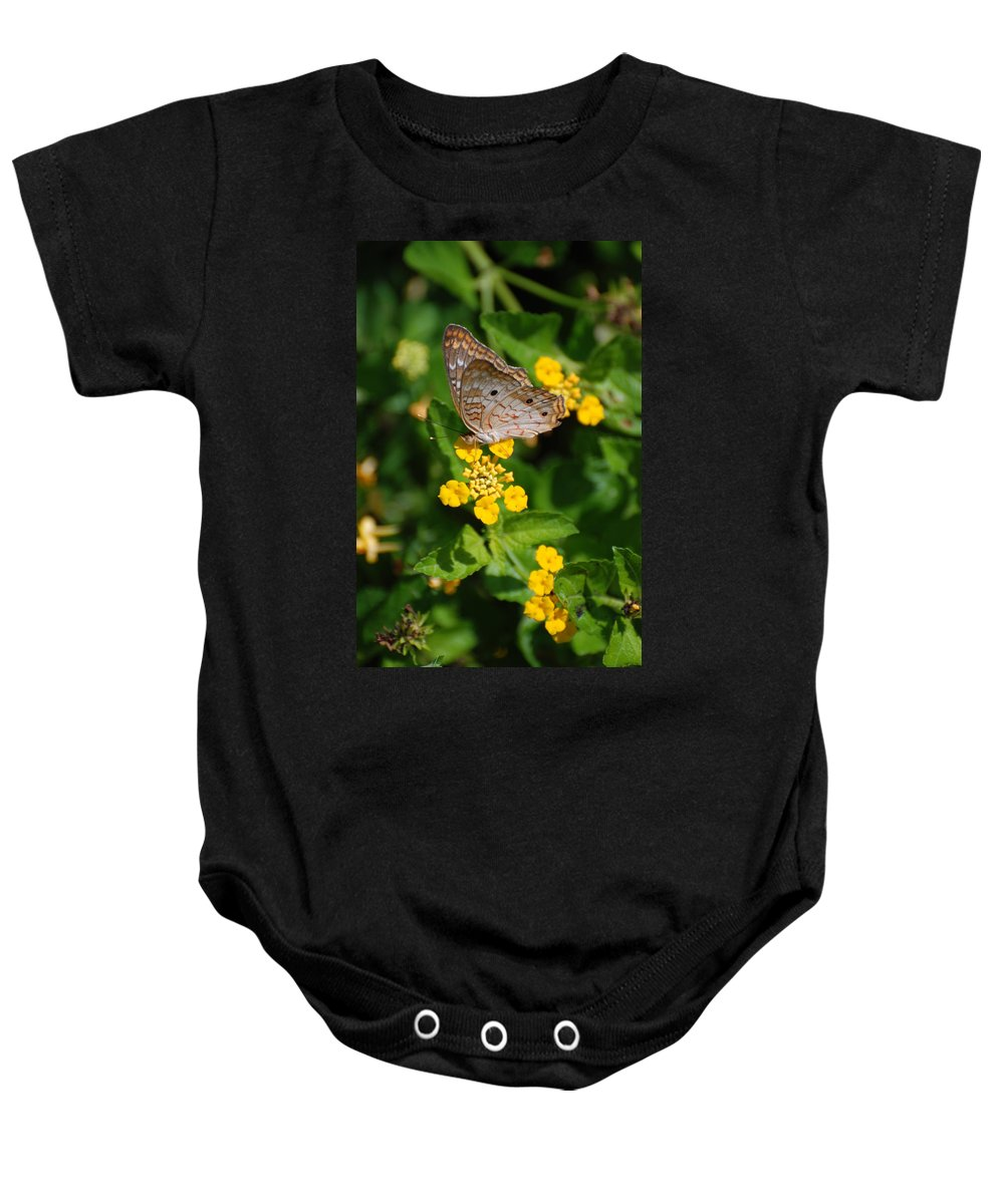 Butterfly Baby Onesie featuring the photograph 5 Yellow Flowers And A Buttefly by Rob Hans