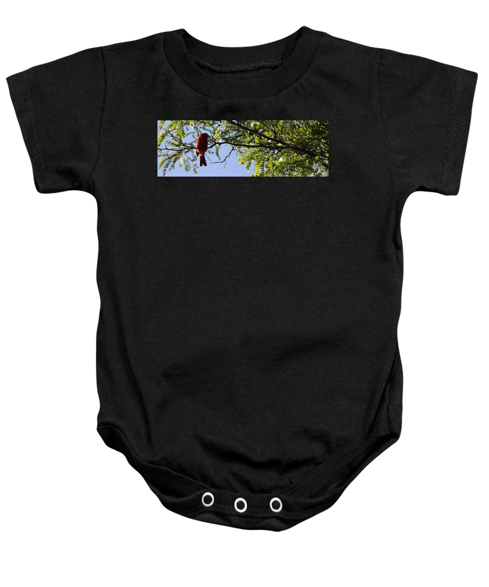 A Card In All Zen Baby Onesie featuring the photograph A Card In All Zen by Ed Smith