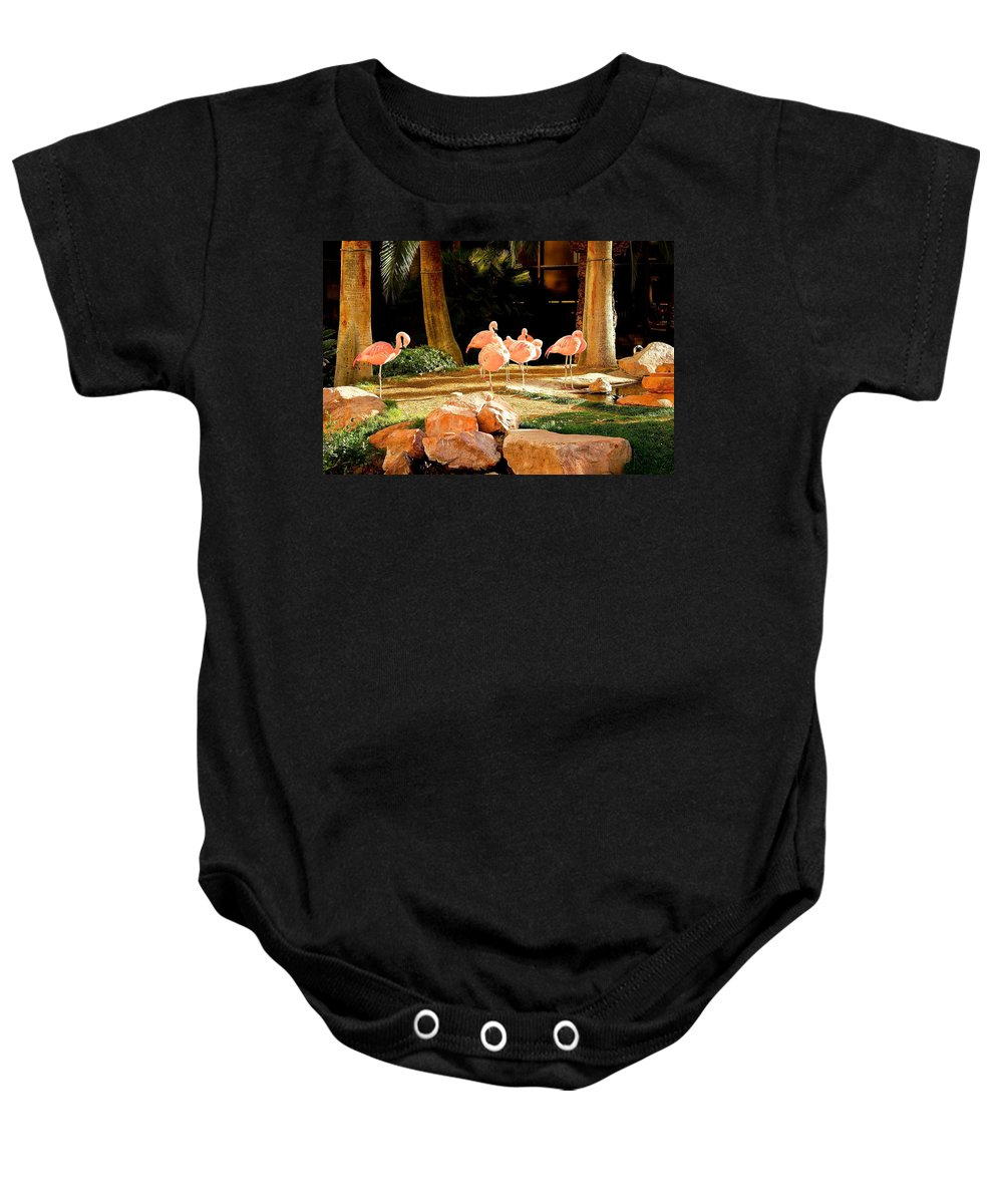 Flamingos Baby Onesie featuring the photograph A Family Gathering by Barbara Zahno