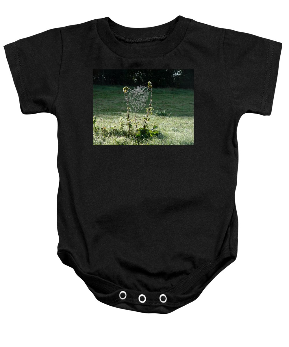 Web Baby Onesie featuring the photograph A Good Nights Work by Susan Baker