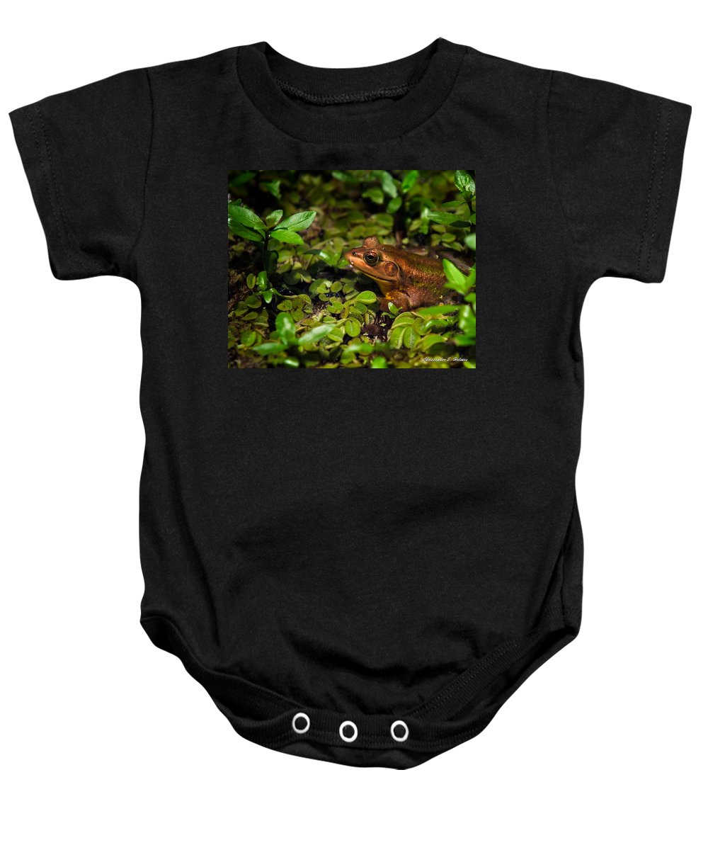 Frog Baby Onesie featuring the photograph A Little Bronze by Christopher Holmes
