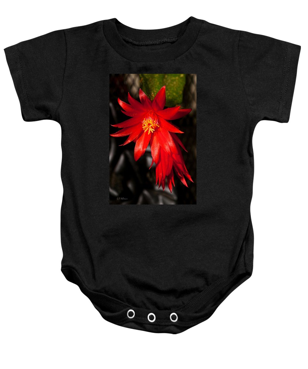 Bloom Baby Onesie featuring the photograph A Little Fire by Christopher Holmes