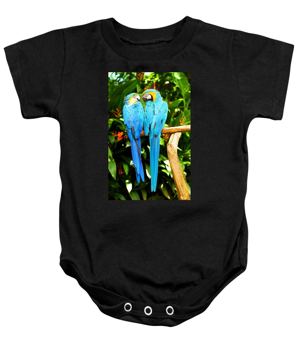 Bird Baby Onesie featuring the photograph A Pair Of Parrots by Marilyn Hunt