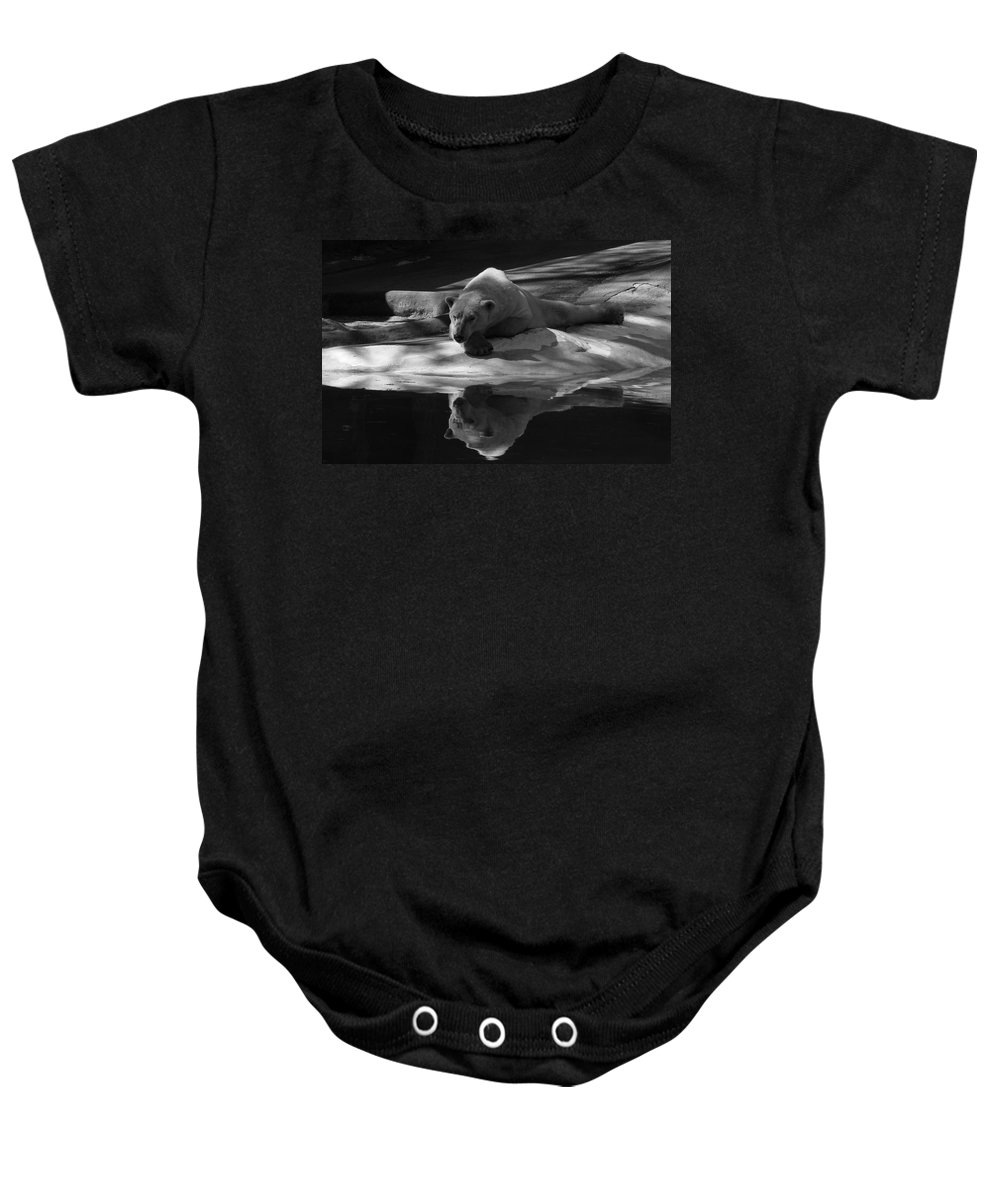 Bear Baby Onesie featuring the photograph A Polar Bear Reflects by Karol Livote