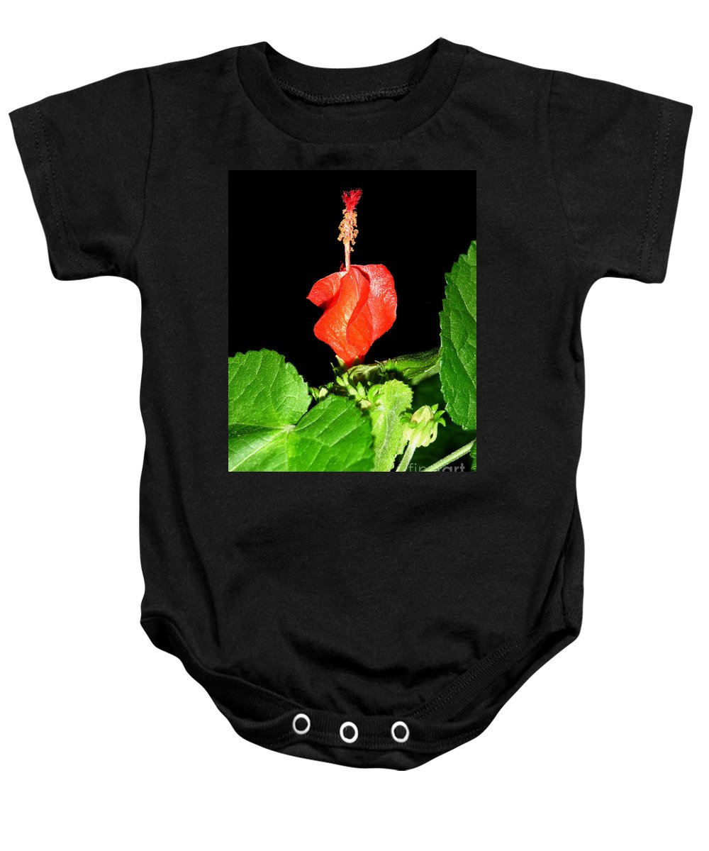 Nature Baby Onesie featuring the photograph A Swirl Of Red by Lucyna A M Green