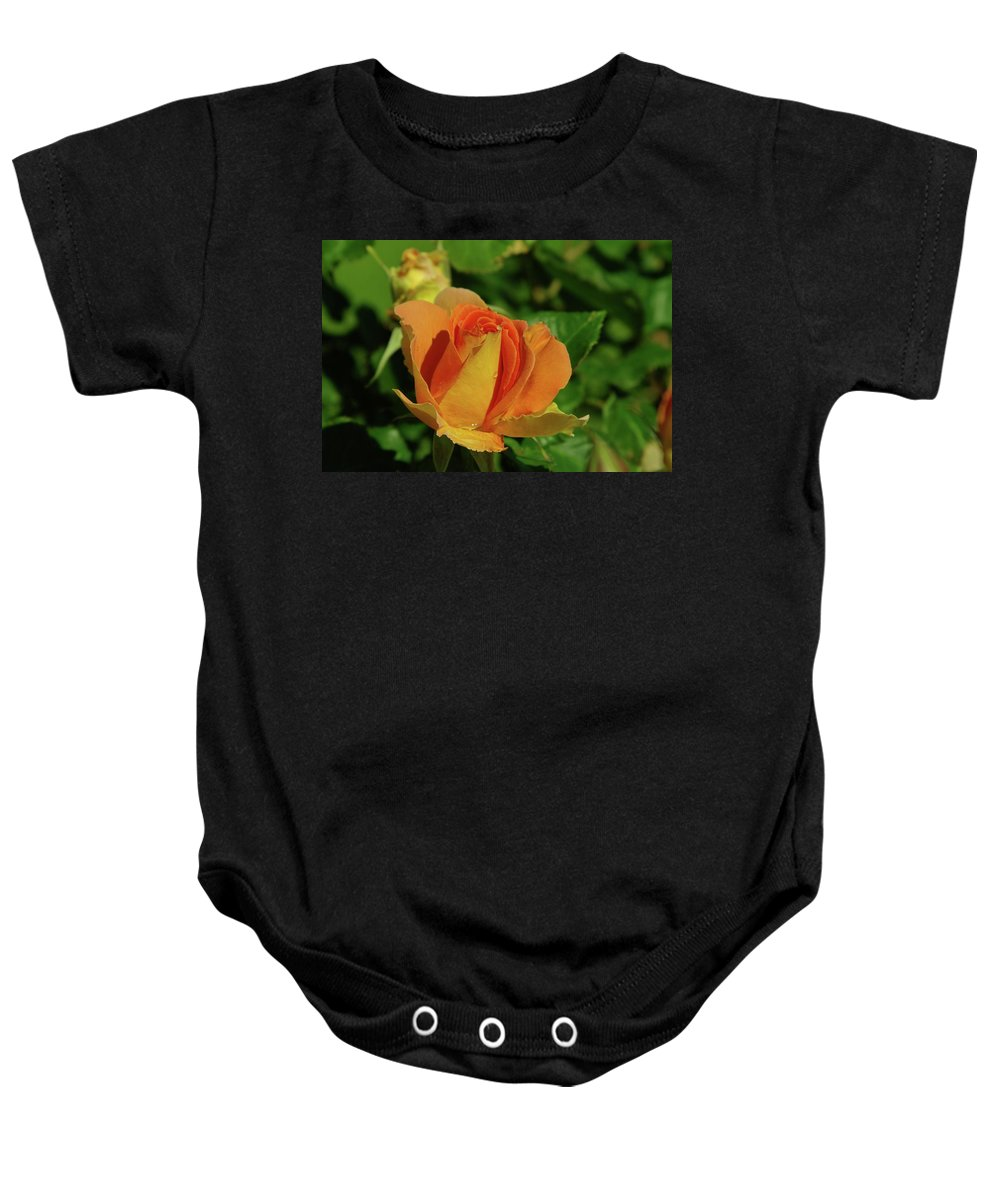 Roses Baby Onesie featuring the photograph A Wet Rose by Jeff Swan