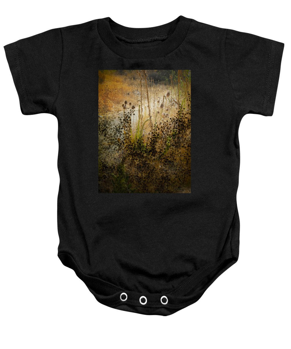 Landscape Baby Onesie featuring the photograph Abstract - Burning Bush by Karen W Meyer