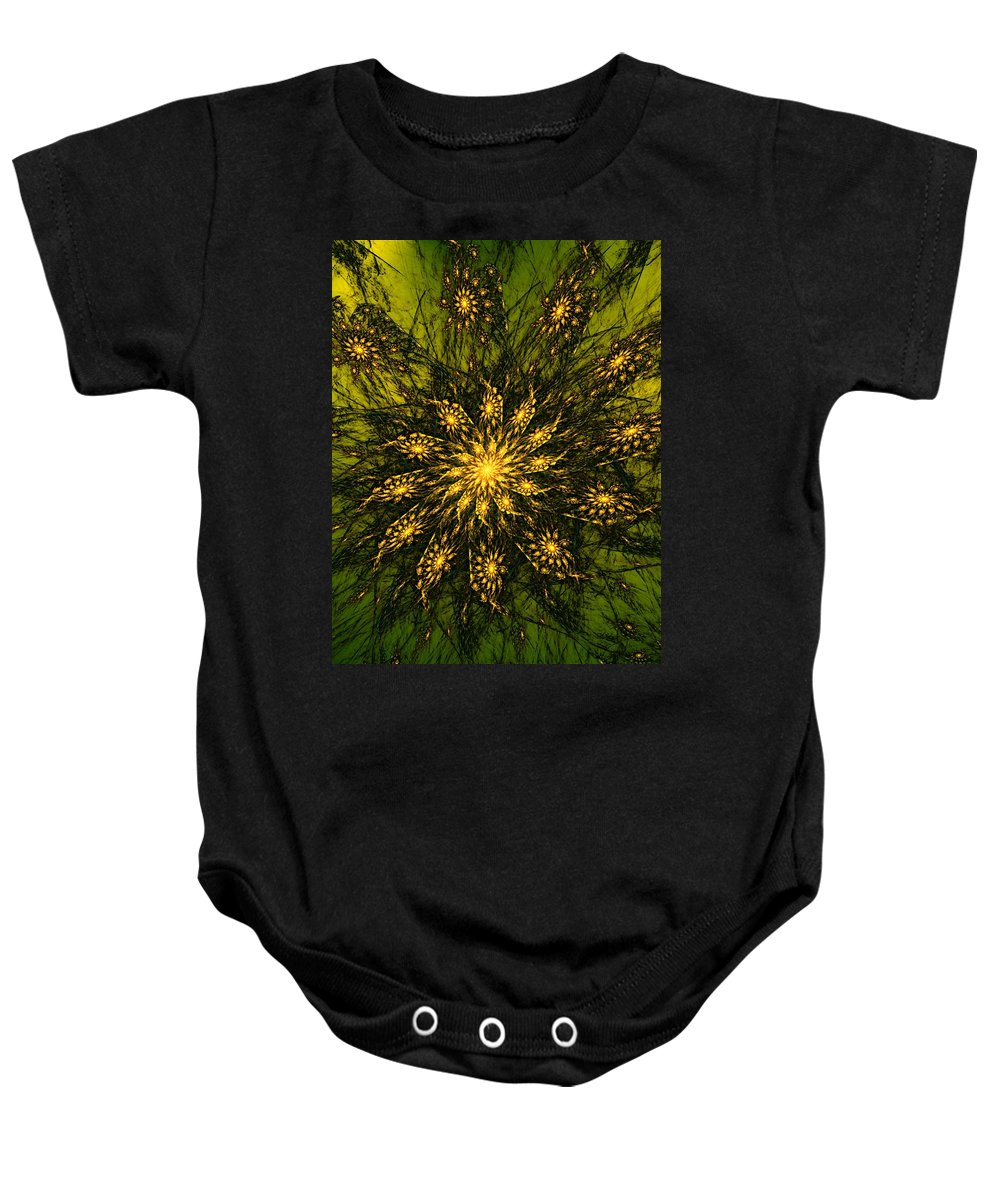 Fractal Baby Onesie featuring the digital art Abstract 090110 by David Lane
