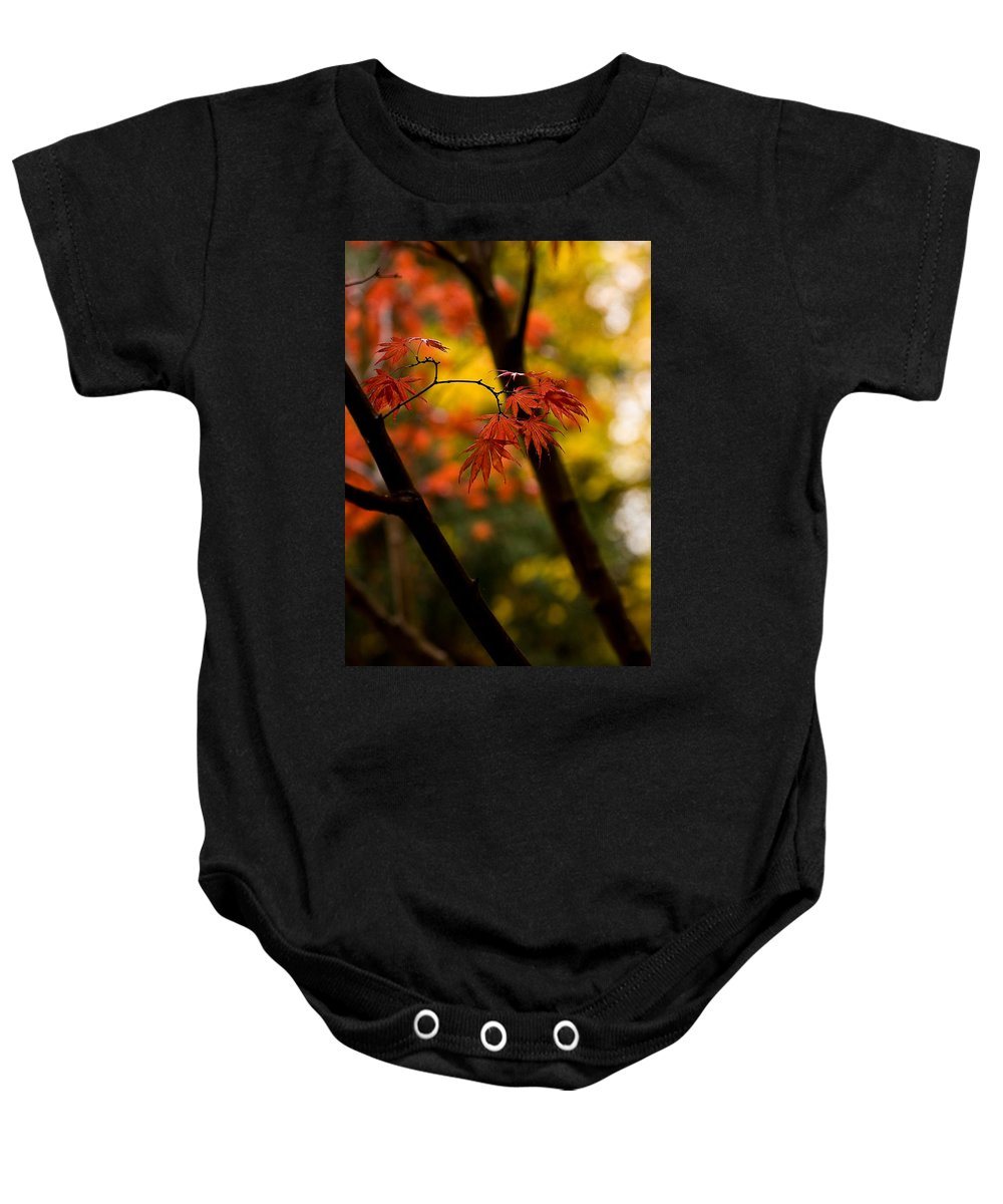 Acer Baby Onesie featuring the photograph Acer Silhouette by Mike Reid