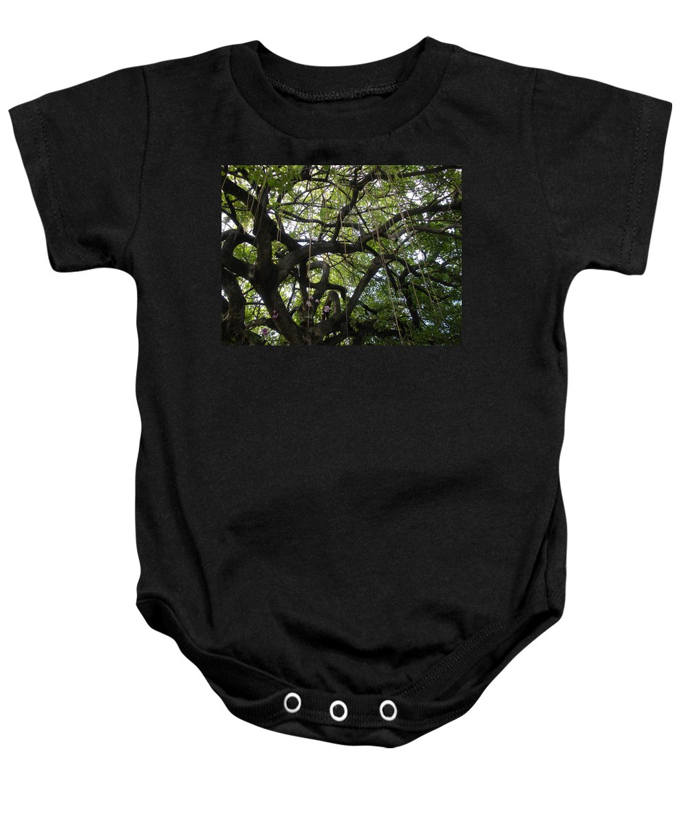 Trees Baby Onesie featuring the photograph Aerial Network II by Maria Bonnier-Perez