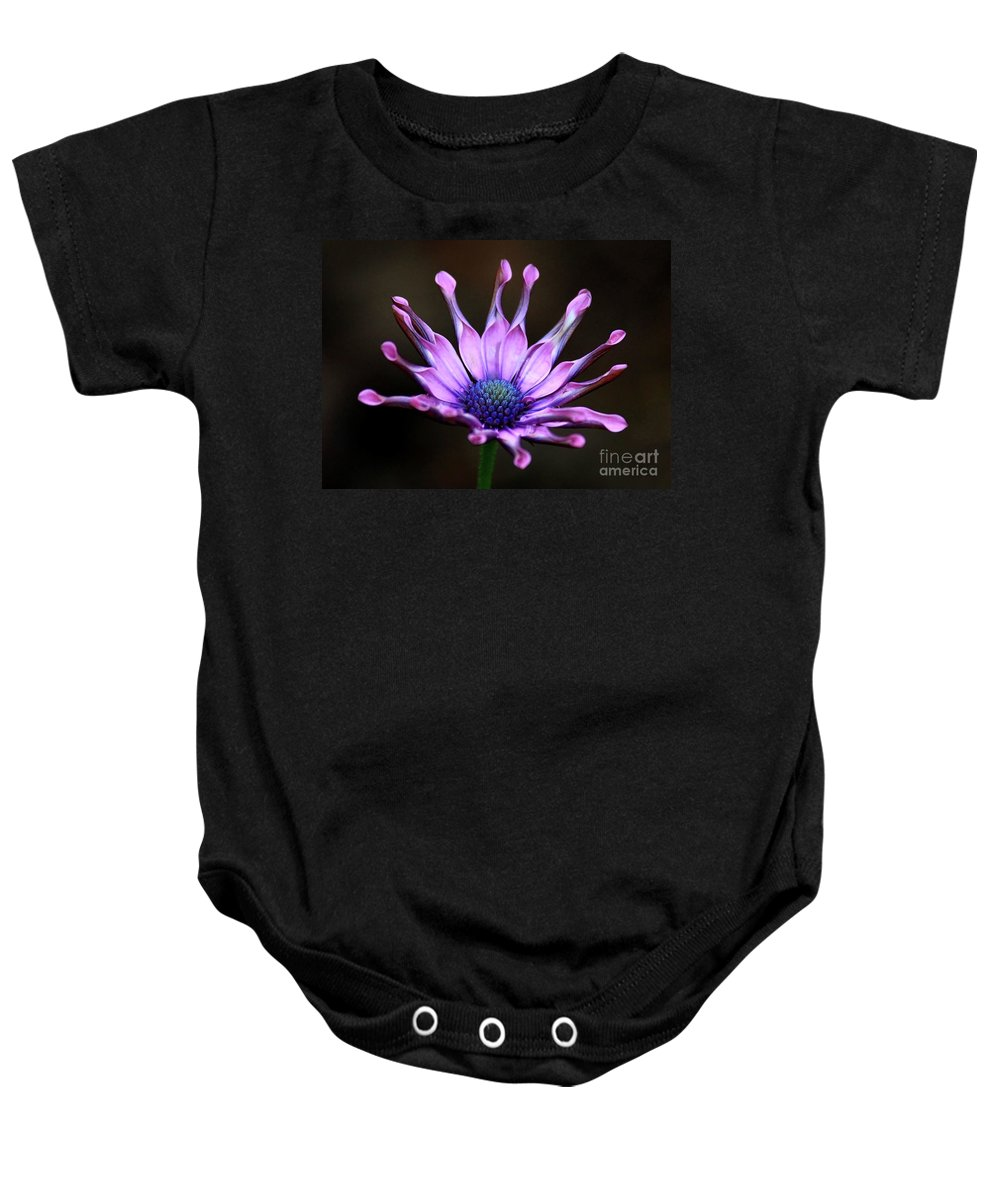Nature Baby Onesie featuring the photograph African Daisy Portrait by Carol Groenen
