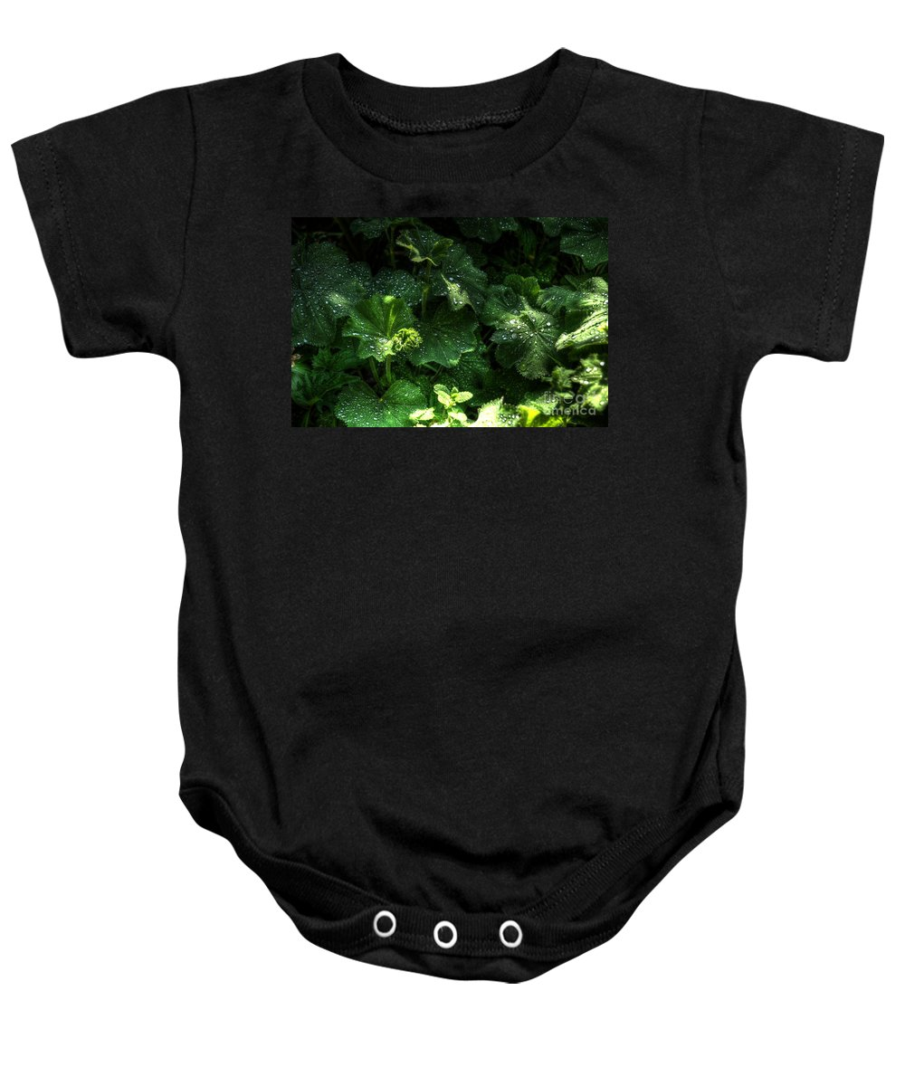 Chris Fleming Baby Onesie featuring the photograph After The Rain by Chris Fleming