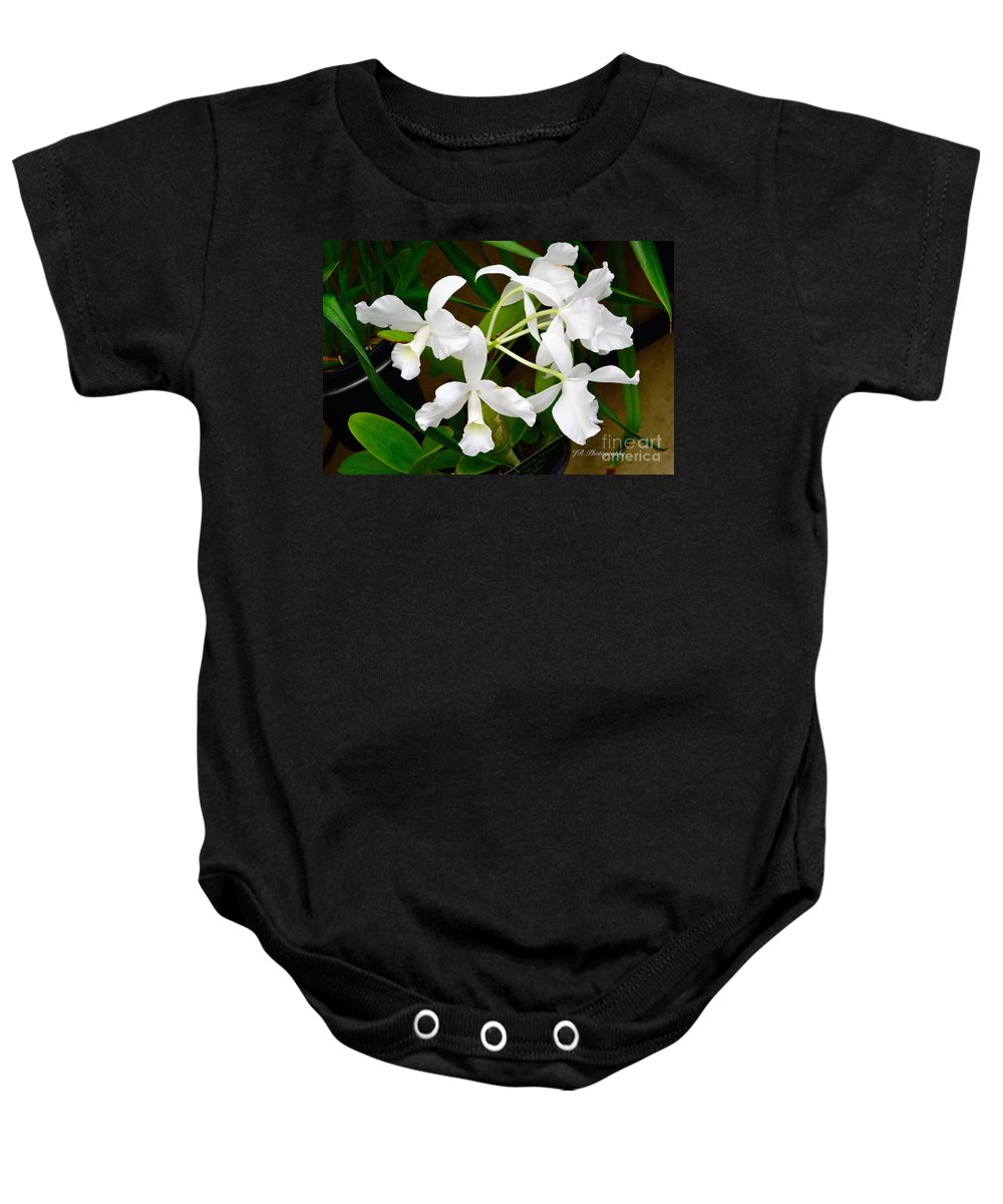 Anniversaries Baby Onesie featuring the photograph Alba Orchid by Jeannie Rhode