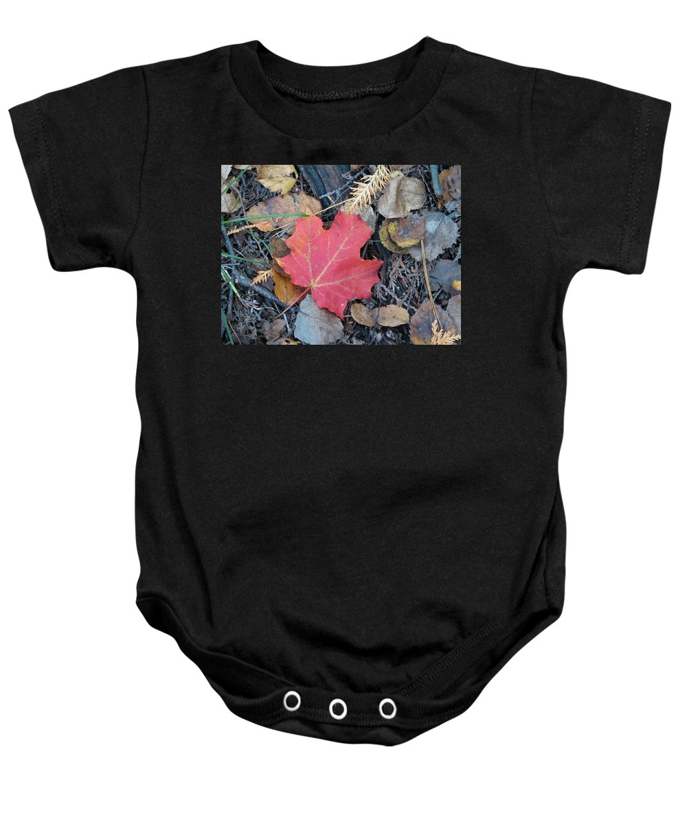 Leaves Baby Onesie featuring the photograph Alone In The Woods by Kelly Mezzapelle