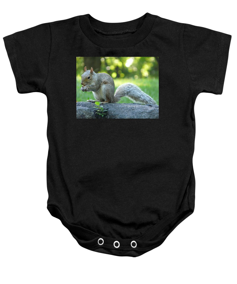New York Baby Onesie featuring the photograph American Squirrel by Valerie Ornstein