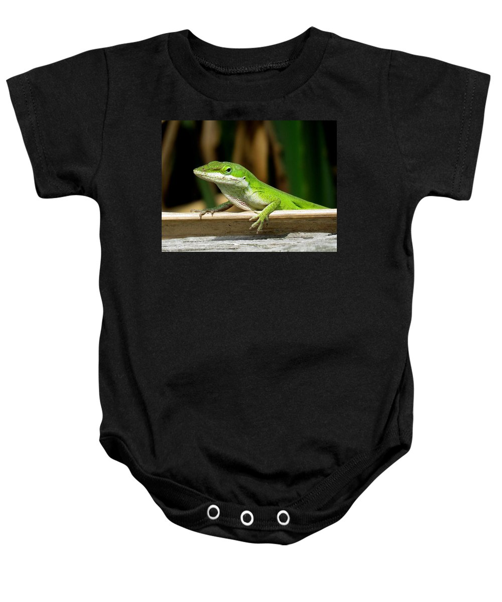 Anole Baby Onesie featuring the photograph Anole 16 by J M Farris Photography