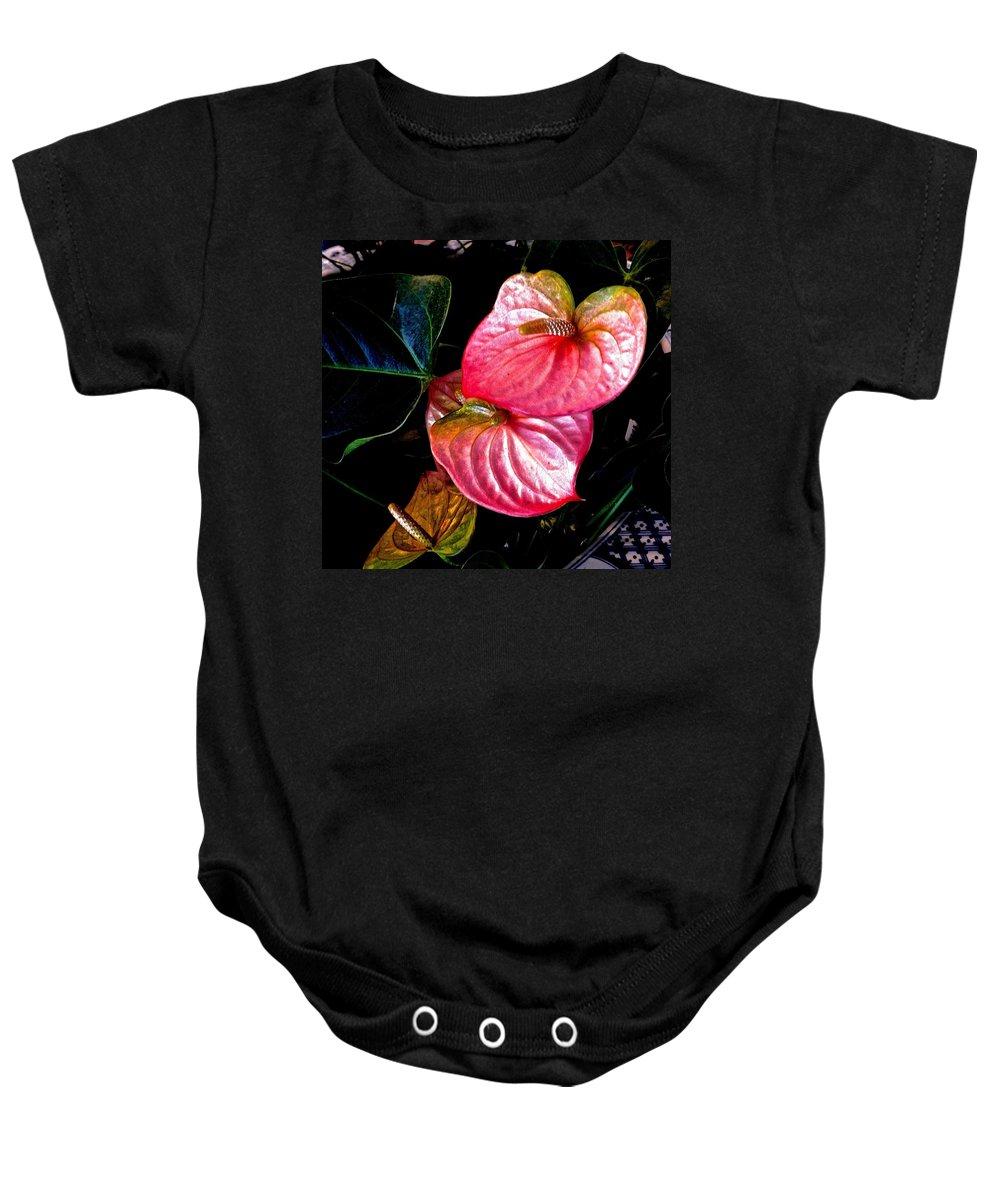 Anthurium Baby Onesie featuring the photograph Anthurium by Barbara Zahno