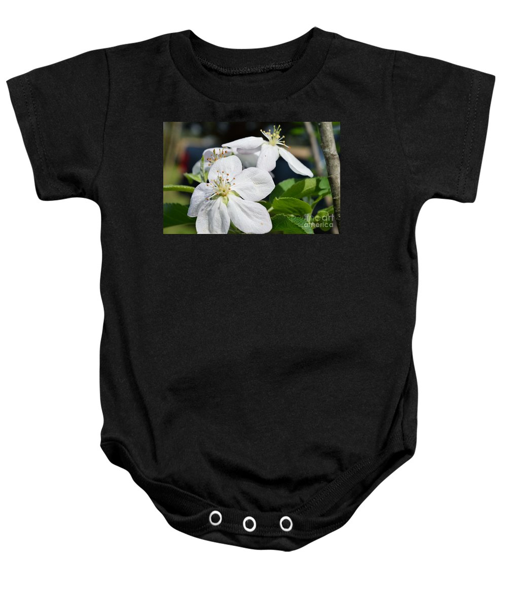 Flower Baby Onesie featuring the photograph Apple Blossom by Renee Sosanna Olson